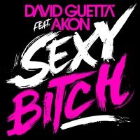 DAVID GUETTA/AKON - SEXY BITCH