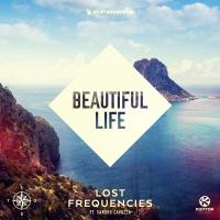 LOST FREQUENCIES/SANDRO CAVAZZ - BEAUTIFUL LIFE